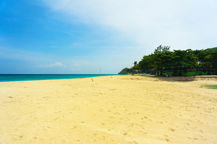 Alone in the beach Malalison, Antique Philippines Adventure Antique Sun Peace Relax Perspective Tree Water Sea Beach Sand Clear Sky Summer Blue Tropical Climate Sky Tropical Tree Palm Leaf Island Calm