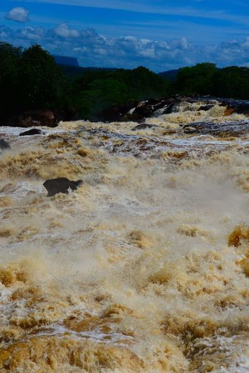 Muddy like rapid in Carrao river, Canaima National Park, Venezuela Beauty In Nature Day Hot Spring Landscape Nature No People Outdoors Rapid Scenics Sky Stream Tannin Tree Water