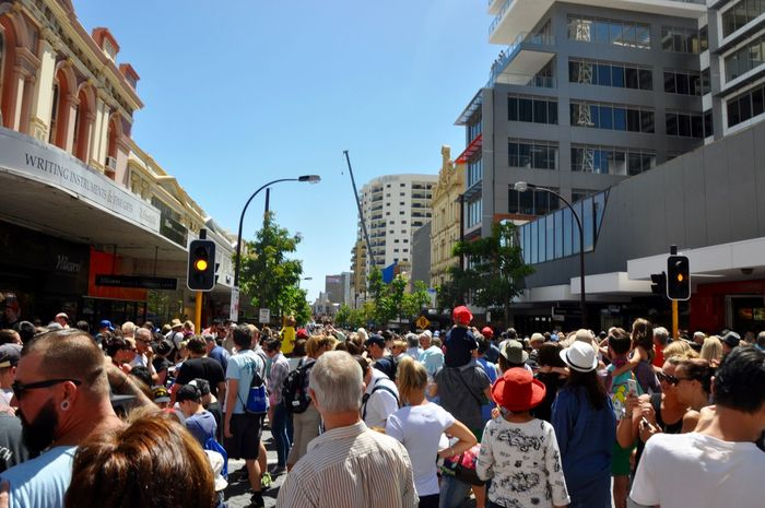 Crowds at Journey of the Giants on the city street in Perth, Western Australia. Architecture Australia Barrack Street Building Exterior Buildings Bustling Busy City Crowd Crowded Day Dense Downtown International Arts Festival Journey Of The Giants Large Group Of People Masses People Perth Stoplight Street Sunny Urban Wall To Wall Western Australia