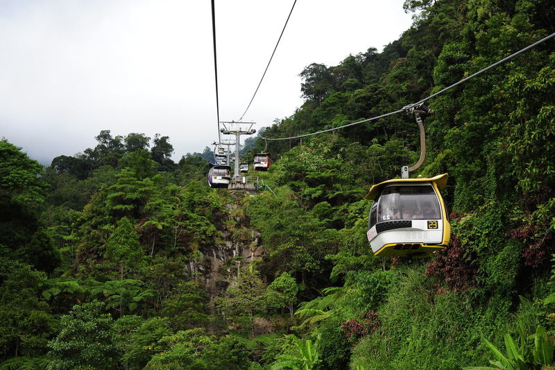Genting Highland Malaysia Genting Skyway Cable Cable Car Connection Day Foliage Green Color Growth Land Vehicle Lush Foliage Mist Mode Of Transportation Nature No People Outdoors Overhead Cable Car Plant Public Transportation Sky Skywatcher Transportation Travel Tree