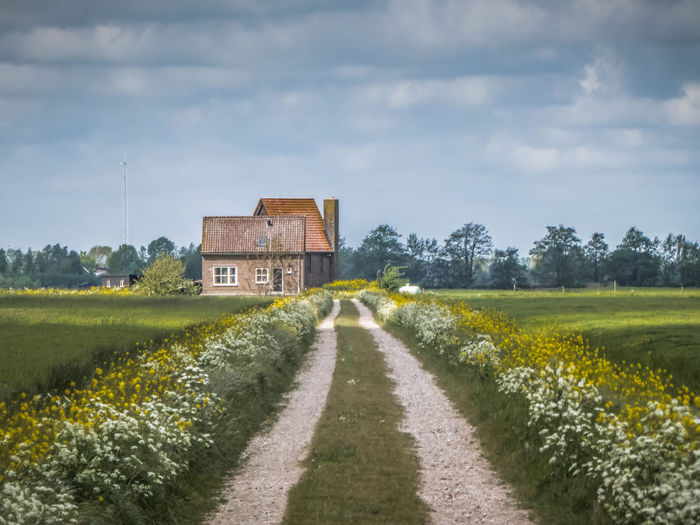 Road amidst field and houses against sky