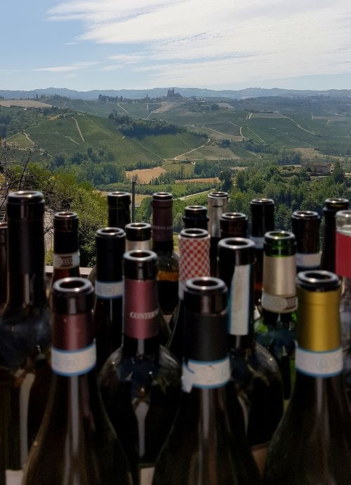 Bottle Wine Bottle In A Row Food And Drink Drink Wine Alcohol No People Agriculture Winery Winemaking Day Outdoors Close-up Sky Winetasting Details Travel Destinations Langhe Langhe Italy Vineyard Cultivation Nebbiolovineyards