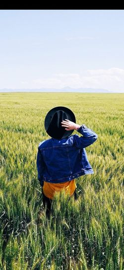 Agriculture Working Cereal Plant Field Rear View Crop  Farm Cultivated Land Agricultural Field Mustard Plant Patchwork Landscape Wheat Oilseed Rape Ear Of Wheat Rice - Cereal Plant Scarecrow Cultivated Horizon Over Land Harvesting Plowed Field Tea Crop Combine Harvester Rice Paddy Plantation
