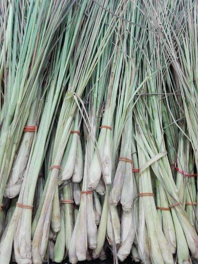 High angle view of spring onions for sale