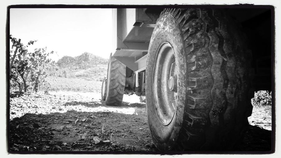 Tractors Black And White Photography Wineyard