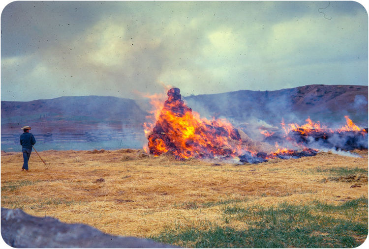 May Burning - Churn Creek, Canada - 1962 Adventure Burning Carefree Escapism Flame Getting Away From It All Heat Landscape Lens Flare Majestic Mountain Mountain Range Outdoors Recreational Pursuit Scenics Smoke Sun Sunbeam Texture, Black, Tree, Fire, Burnt, Tranquil Scene Tranquility