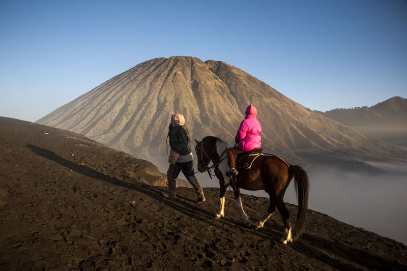 PROBOLINGGO, JAWA TIMUR, INDONESIA - August 11, 2014 Mt. Bromo, East Java, Indonesia - August 11, 2014, Someone is riding a horse in the Bromo desert mountain Domestic Animals Mammal Mountain Animal Themes Animal Land Landscape Ride Clear Sky Outdoors Riding Horse One Animal Leisure Activity Nature Sky Two People Domestic Pets Day Livestock Bromo Mountain Bromo-tengger-semeru National Park Traveling Bromo Tengger Semeru National Park Capture Tomorrow
