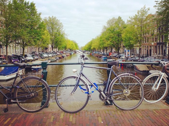 Bicycles parked by railing in river against sky