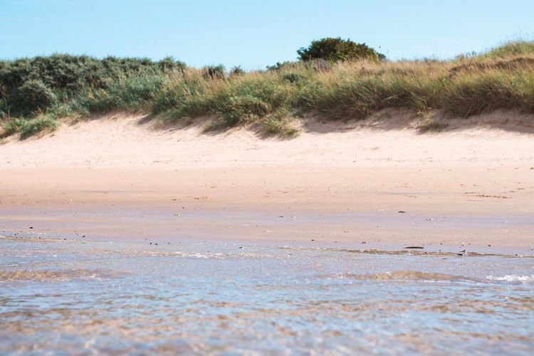 Scotland Beach Land Plant Sky Beauty In Nature Nature Day Tranquil Scene Environment Blue Sand Grass Water Outdoors