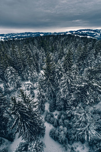 Wintermorgen über dem Emmental mit Stockhorn in der Distanz Beauty In Nature Cold Temperature Day High Angle View Landscape Nature No People Outdoors Scenics Sea Sky Snow Tree Winter