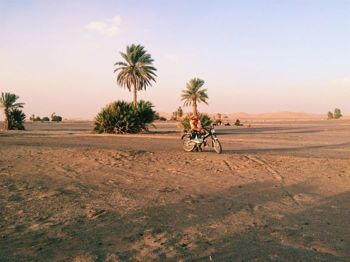 Sahara desert,