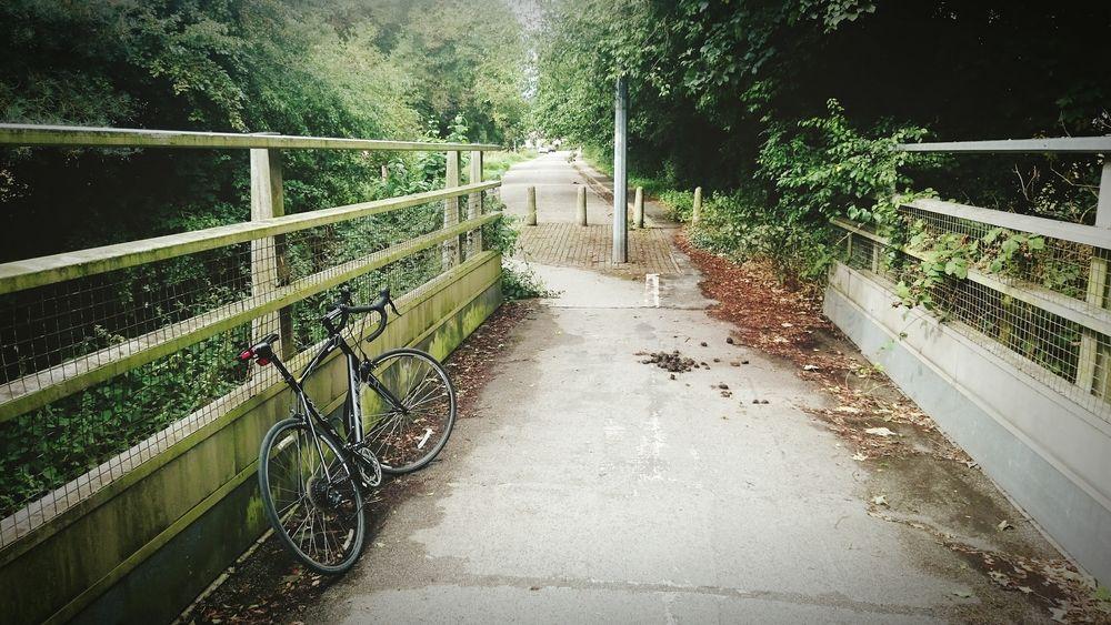 Cycling Bike Ride Roadbike