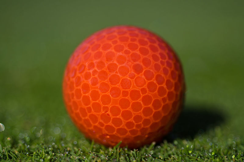 Red Golf Ball on the Grass Grass Green Color Sunny Activity Ball Close-up Day Extreme Close-up Golf Golf Ball Golf Course Grass Green - Golf Course Green Color Leisure Activity Macro Nature No People Pattern Red Selective Focus Sport