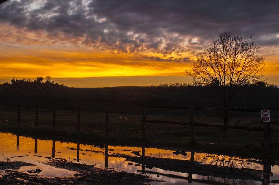 Tramonto Sunset Colori Arancio Dorato Inverno #tramonto Dopo La Tempesta