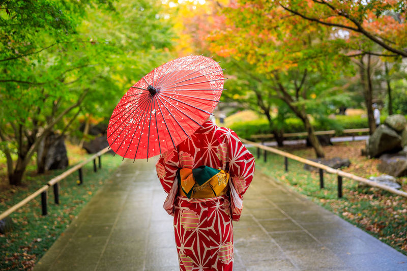 Young girls tourist wearing red kimono and umbrella took a walk in the park in autumn season