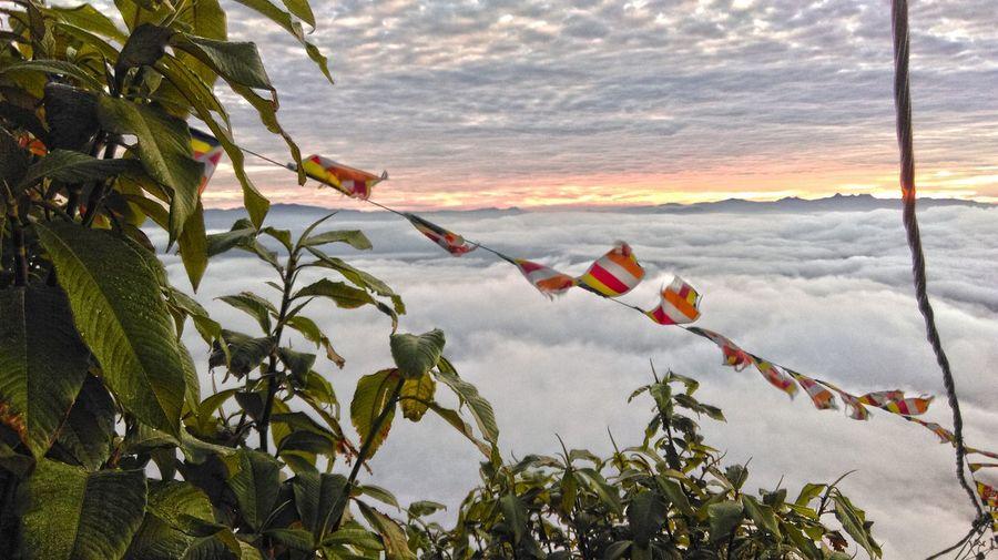 Adam`s Peak Clouds Morning Morning Sky Morning View Sri Lanka
