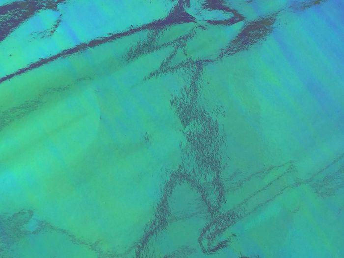 Full frame shot of jellyfish
