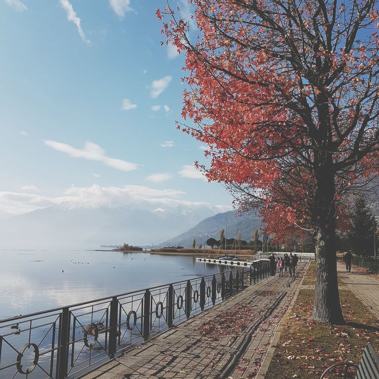 Como lake Como Como Lake Italy Italy🇮🇹 Autumn Autumn colors Leaves🌿 Leaves 🍁 Water Lake View Water Lake Water Sea Sky Outdoors Travel Destinations No People Nature Tranquility Beauty In Nature Cloud - Sky Scenics Day Vacations Beach Tree Horizon Over Water UnderSea