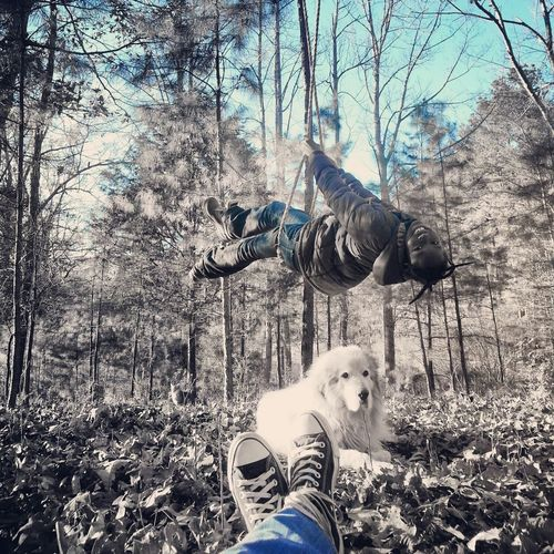 Enjoying Life Kids Animals Nature swinging