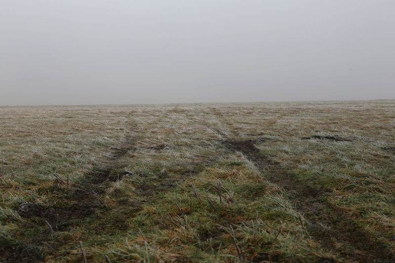 1803, views around airfield wasserkuppe Wasserkuppe Winter Airfield Clear Sky Cold Temperature Day Field Foggy Morning Grass Horizon Over Land Landscape Nature No People Outdoors Scenics Sky