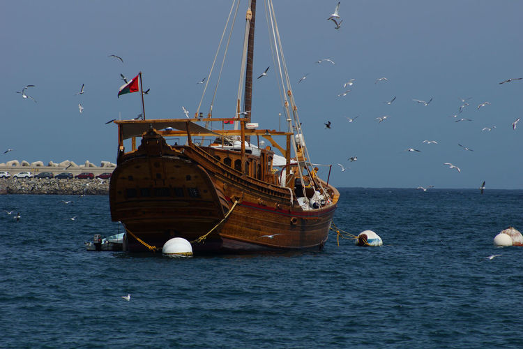 Flock of birds flying by boat with omani flag over sea against clear sky