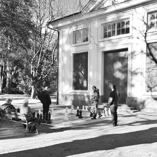 Tree Real People Architecture Building Exterior Sunlight Day Outdoors Built Structure People Adult EyeEmNewHere Chess Chess Board Innsbruck Austria Österreich Stadtpark Park