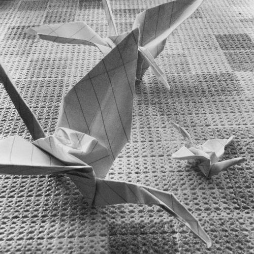 Blackwhite Ankara Turkey From  bahceli dragons shape to love loveiseverywhere life lifeisgoingon origami bahcelievler bahceli