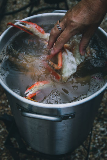 Person preparing fish in container