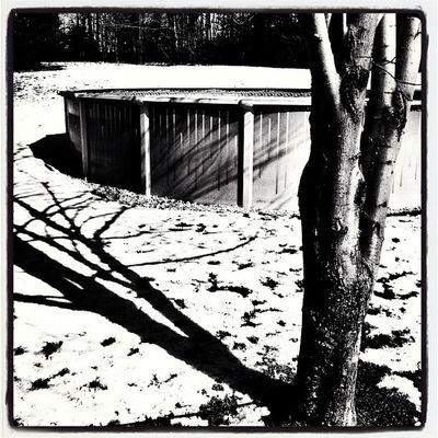 Shadows & Ice. #btv #vt #miltonvt Vt_scene Black_white Pool B Shadows Winter Silhouette Snow Outdoor Vermont Vt Btv Vt_scenery 802 Milton_vt Miltonvt