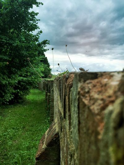 Nature Weather Walls Architecture Historical Architecture Village History Village View Old Wall Focus On Foreground Sky Cloud Outdoors Landscape The Moot Grass Slopes Ornamental Garden Tree Home Is Where The Art Is