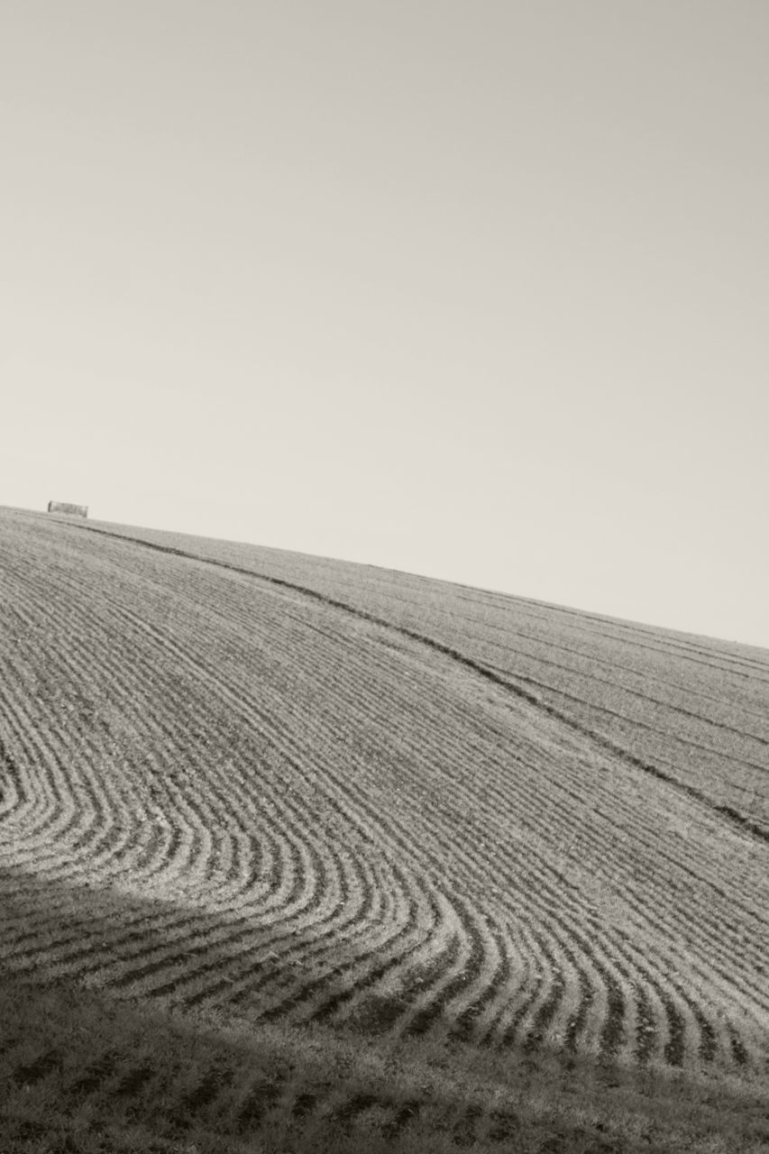 clear sky, copy space, landscape, tranquil scene, nature, agriculture, tranquility, field, sand, scenics, no people, beauty in nature, outdoors, arid climate, rural scene, day, horizon over land, pattern, tire track, sky, plowed field, sand dune, desert, salt - mineral