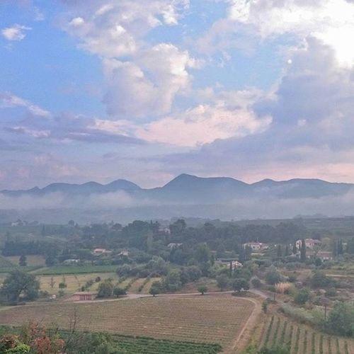 Misty morning Provence