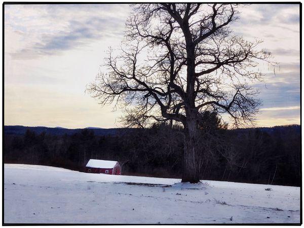 Winter afternoon Winter Landscape Maine