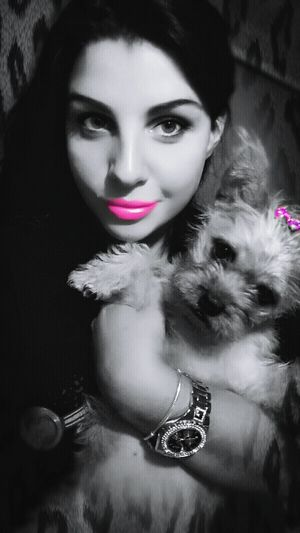 Me And My Princess  Pom X Terrier Pink
