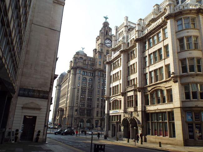 Liver Building Royal Liver Building City Life City Streets  Liverpool Liverpool, England Merseyside United Kingdom