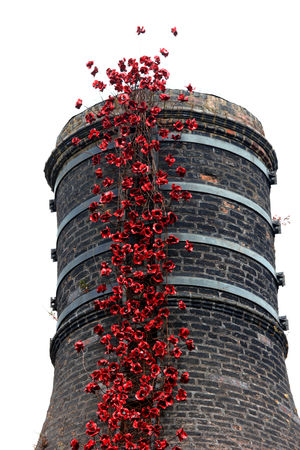 Architecture Building Exterior Built Structure Ceramic Art Clear Sky Day Decoration Growth Low Angle View No People Outdoors Poppies  Red Tall - High Weeping Poppies