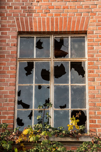 Old destroyed brick house ruin with broken windows Brick Building Exterior Architecture Brick Wall Built Structure Window Wall No People Day Building Outdoors Nature Wall - Building Feature Plant Low Angle View Glass - Material Old Animal Vertebrate Mammal