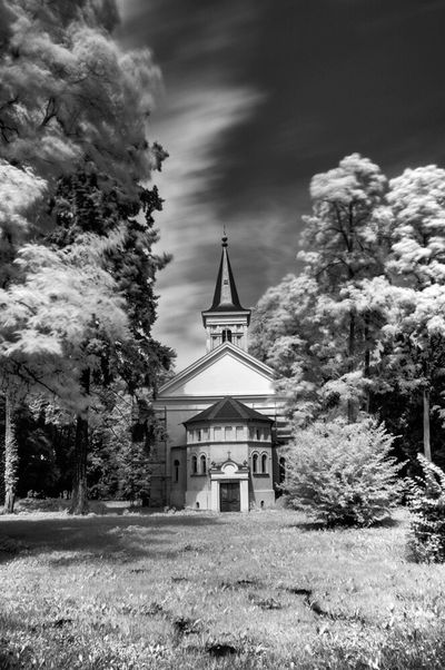 IR Bw Infrared Infrared Photography Blackandwhite Photography
