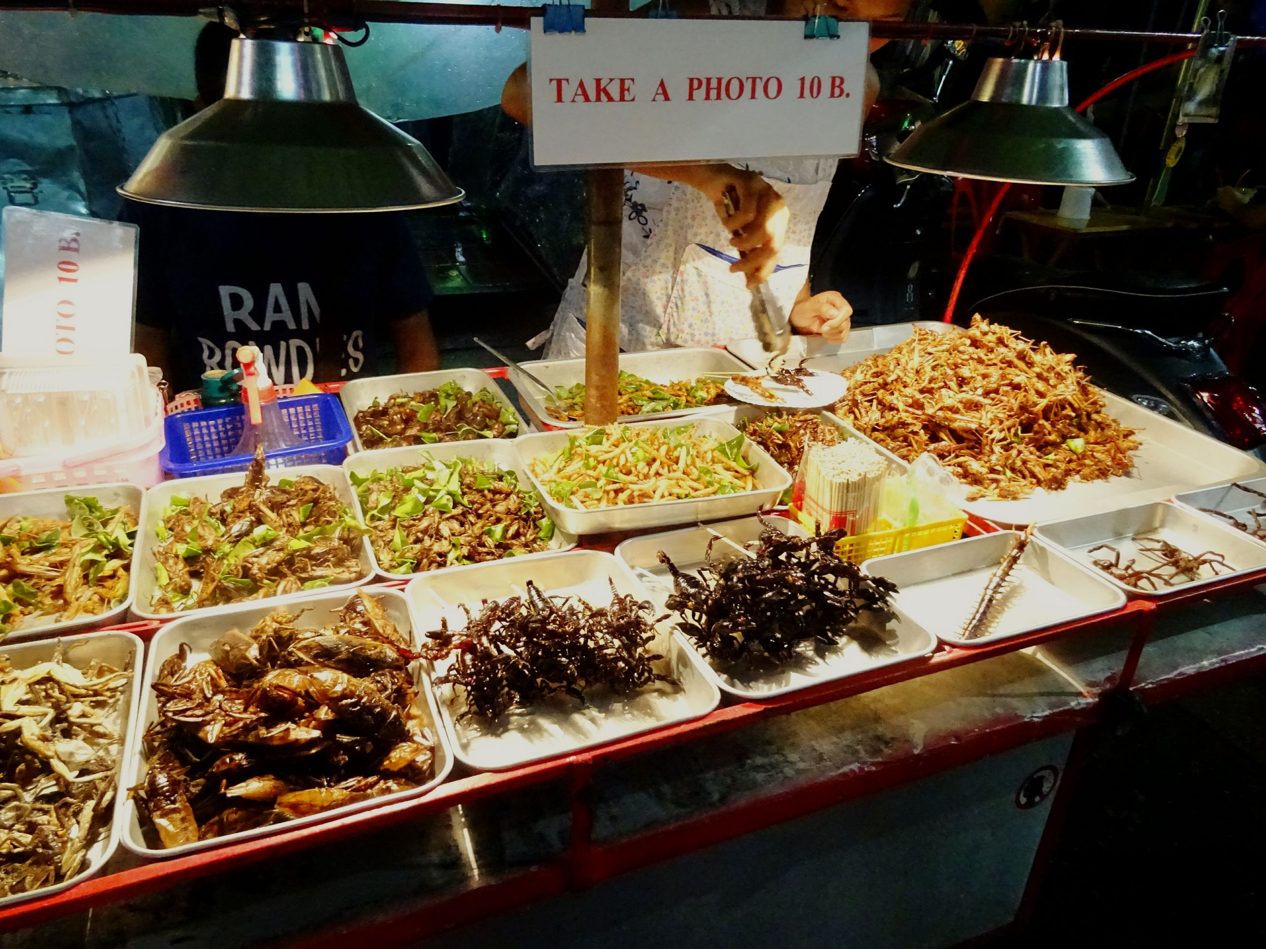 text, food, variation, food and drink, for sale, freshness, choice, bakery, market stall, market, no people, indoors, day