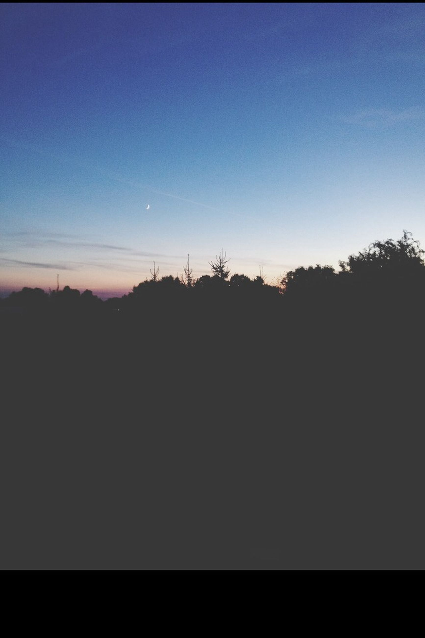 silhouette, sunset, tranquil scene, copy space, tranquility, scenics, beauty in nature, tree, clear sky, sky, nature, dusk, idyllic, blue, dark, landscape, outdoors, no people, outline, non urban scene