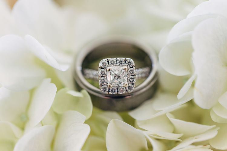 Plant Flower Flowering Plant Beauty In Nature Close-up Nature Growth Freshness Wedding Ring No People Selective Focus Ring White Color Petal Diamond - Gemstone Day Jewelry Inflorescence Botany Flower Head