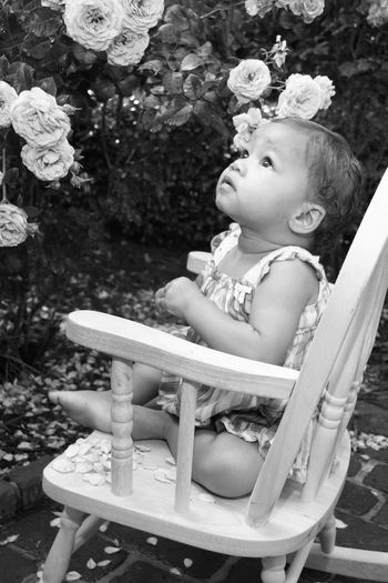 MyBabyGirl  Familylife Love To Take Photos ❤ Itswhatido Blackandwhitephotography Tranquil Scene Outdoors Babygirl Loveofmylife ♥ Flowers Flowers,Plants & Garden Flowerpower Flower Photography Baby Photography Baby Girl ThePhotojournalist2016eyeEmAwards This Is Family