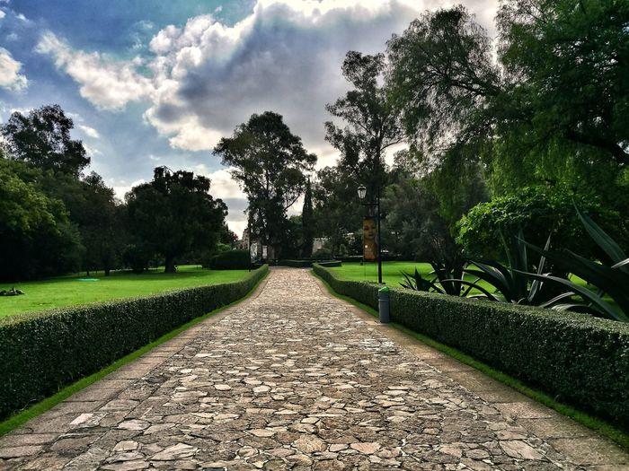 Hacia Diego Museo Dolores Xochimilco Xochimilco DF Tree Sky Grass Green Color Cloud - Sky Garden Path