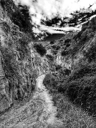 Dirt road passing through landscape
