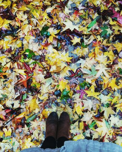 One Person Personal Perspective Outdoors Lifestyles Shoe Autumn Day Women One Woman Only concepción