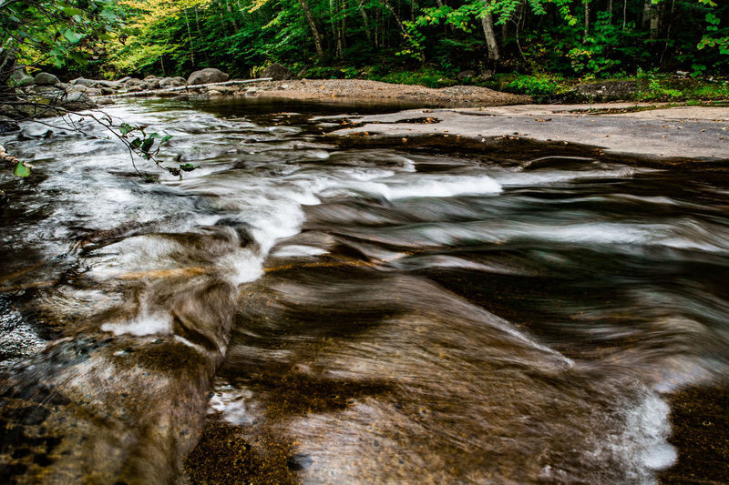 Beauty In Nature Blurred Motion Day Flowing Flowing Water Forest Land Long Exposure Motion Nature No People Outdoors Plant River Rock Rock - Object Scenics - Nature Solid Stream - Flowing Water Tree Water