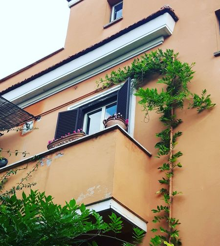 Building Exterior Architecture Window Built Structure House Low Angle View Outdoors Façade Day No People Roof Rome, Italy Monteverde Vecchio