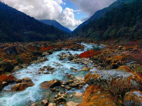 """On the Way to Thangsing (Sikkim ). Too much Color in one Shot . It seems Nature is bleeding Colors . The Water flowing is the cleanest Maybe . You just Wander and you keep on Knowing Yourself . That's why GustauveFlaubert said : """"Travel makes One Modest . You See what a Tiny place you occupy in World ."""" GoechaLA2015 GoechaLa Traveldiaries Travel2015 TeamCleanUp Peace Himalaya"""