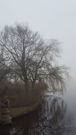 Alster Außenalster Germany🇩🇪 Hamburg Hamburg City January January 2018 Winter Winter Fog Außenalster Beauty In Nature Day Foggy Foggy Day Germany Lake Lake View Mystical Atmosphere Nature No People Peaceful Peaceful And Quiet Silence Of Nature Water Tranquility Tranquil Scene Tree Scenics Bare Tree Landscape
