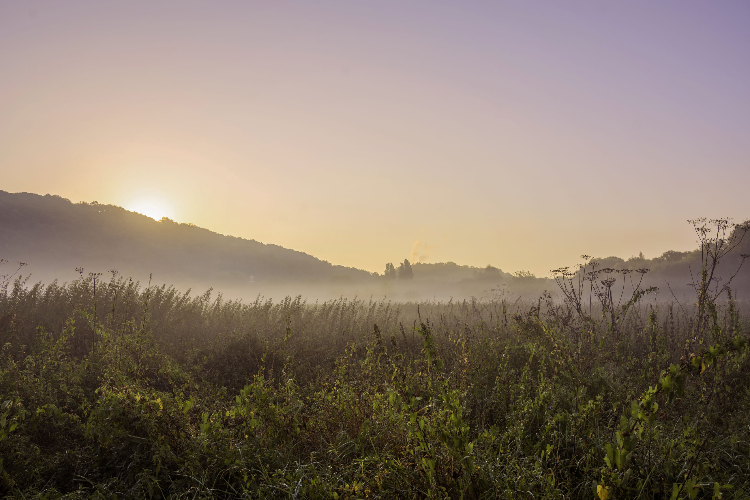 SCENIC VIEW OF LANDSCAPE DURING SUNRISE